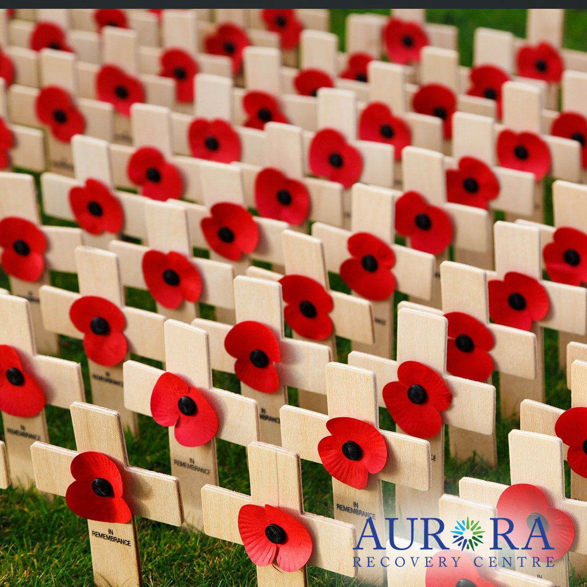 Remembrance Day in Recovery